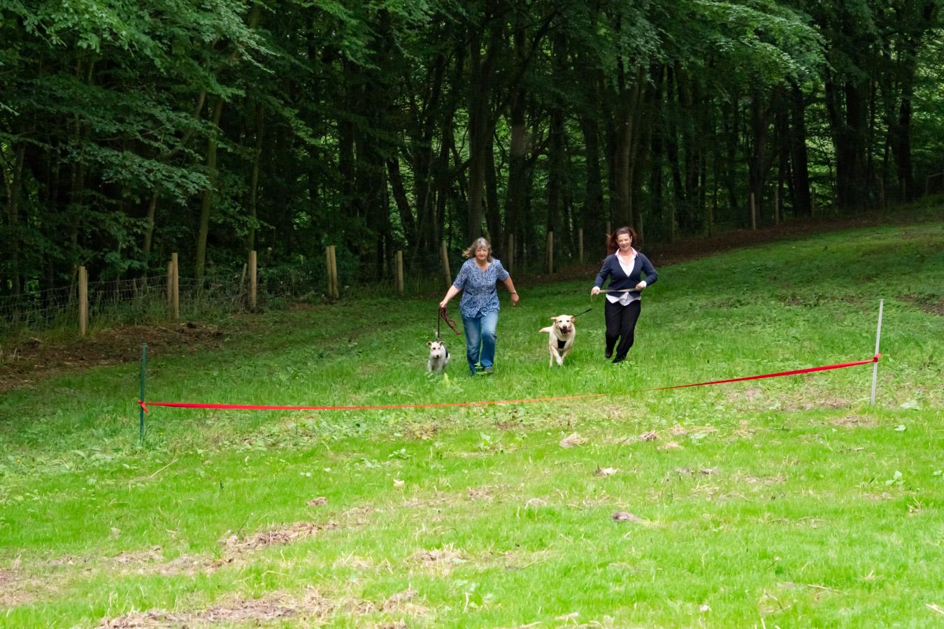Monkton-Wyld-Best-Camping-Caravanning-West-Dorset-Dog-Friendly-Walk-3