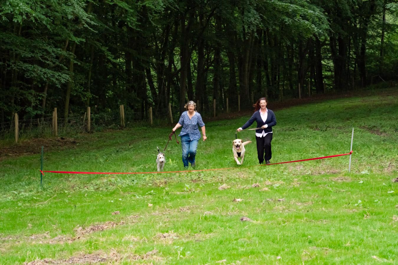Monkton-Wyld-Best-Camping-Caravanning-West-Dorset-Dog-Friendly-Walk-5