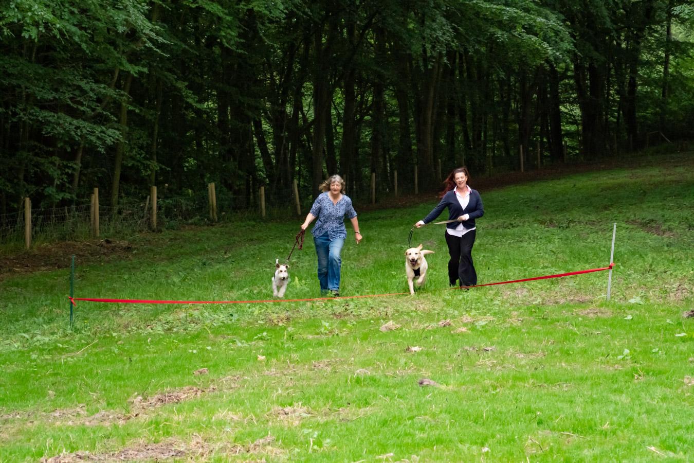 Monkton-Wyld-Best-Camping-Caravanning-West-Dorset-Dog-Friendly-Walk-6