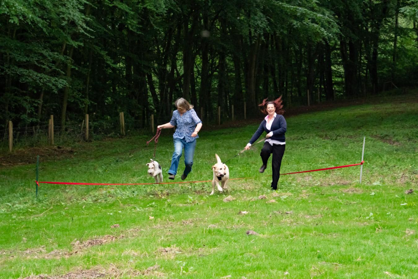 Monkton-Wyld-Best-Camping-Caravanning-West-Dorset-Dog-Friendly-Walk-7
