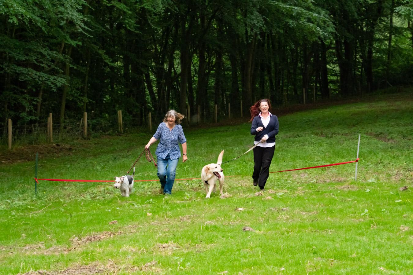 Monkton-Wyld-Best-Camping-Caravanning-West-Dorset-Dog-Friendly-Walk-8