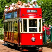 Colyton-Tram-over-20-Trams