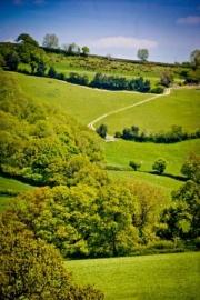 Lyme-Regis-Landscapes-111