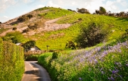 Monkton-Wyld-Best-Holiday-Park-West-Dorset-Camping-Caravanning52