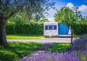 Monkton-Wyld-West-Dorset-Best-Top-Camping-Caravanning127