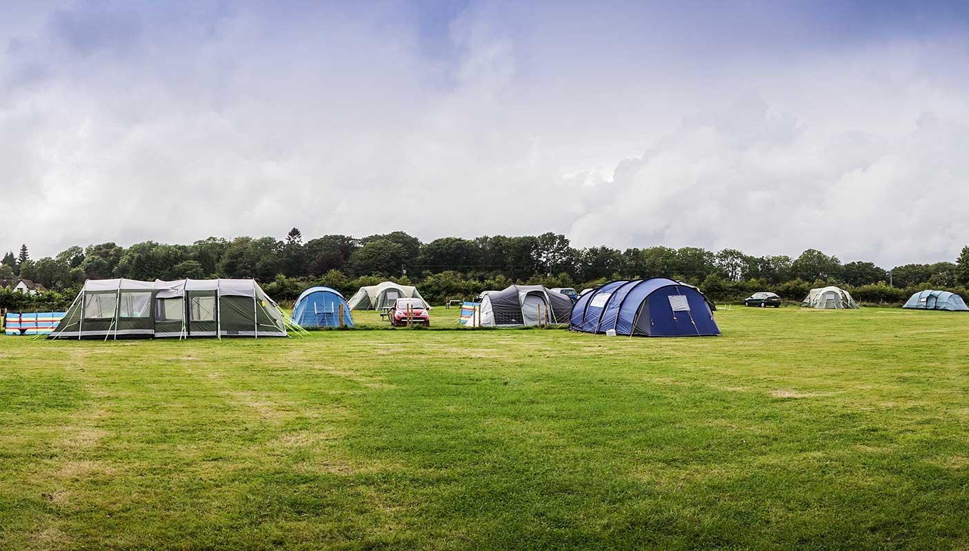 Monkton-Wyld-Camping-Site-Dorset-051