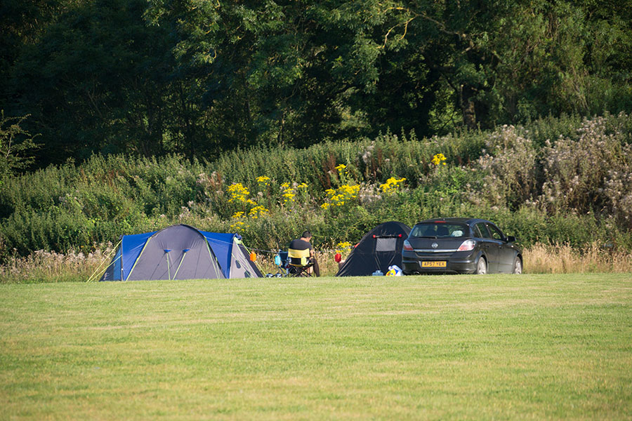 Monkton-Wyld-Camping-Site-Dorset-10