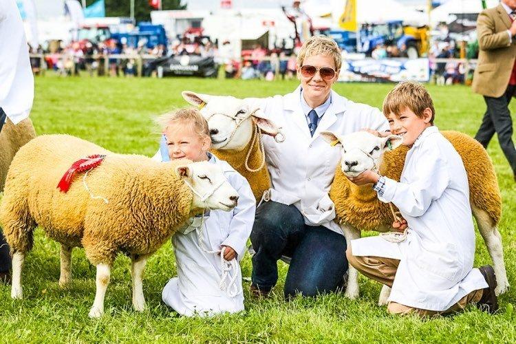 Dorset-County-Show